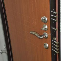 Входные железные двери в Видном